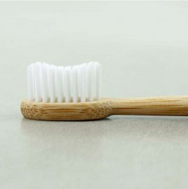 Truthbrush tandborste bambu
